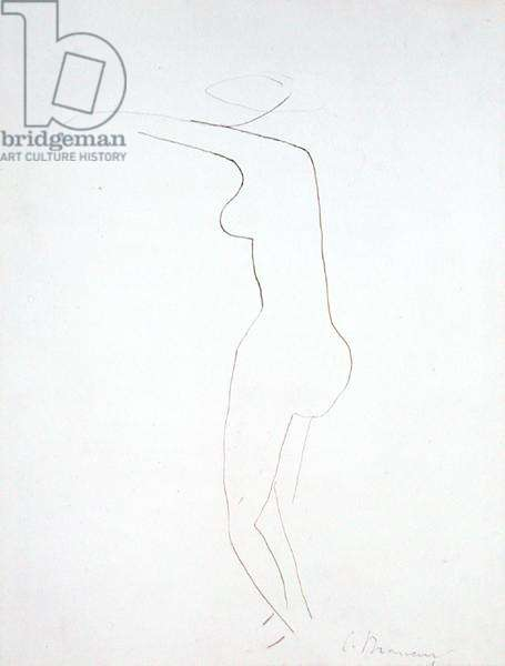 Nude (pen and ink on paper)