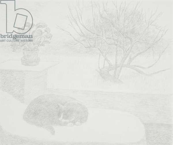 Sleeping Cat, 1992 (drawing)