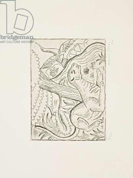 Puma, 1926 (print)