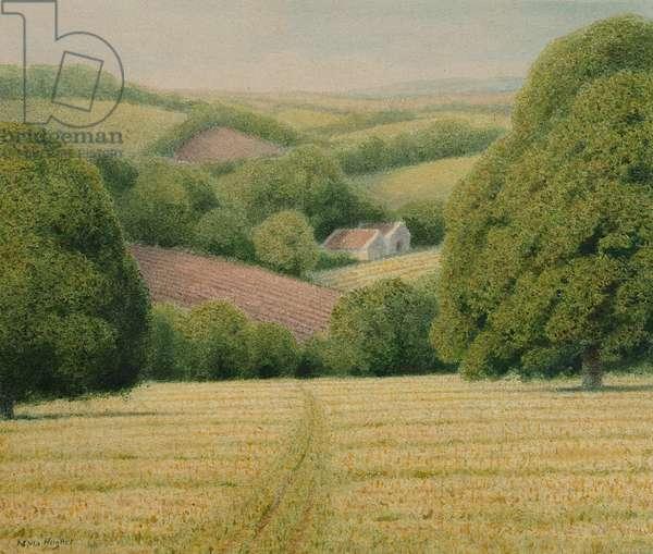 New Cut Meadow, 2008 (w/c on paper)