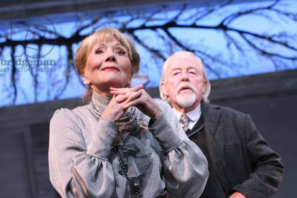 The Cherry Orchard (photo)