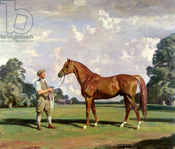 'Hyperion', winner of the Derby and St. Leger, 1933 (oil on canvas)