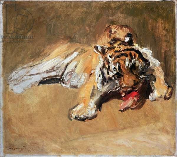Feeding Tiger, 1901 (oil on canvas)