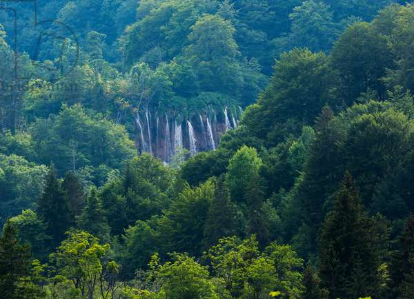 Waterfalls within the park seen from the distance across heavily wooded hills, Plitvice Lakes National Park, Lika-Senj County & Karlovac County, Croatia, Lakeside (photo)