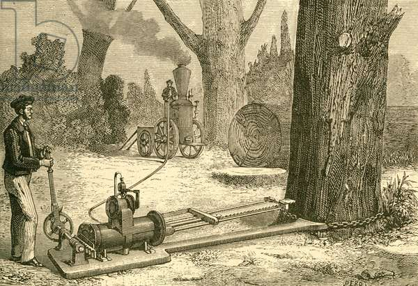 Cutting trees using vapour machines in the late19th century.  From El Museo Popular published Madrid, 1887