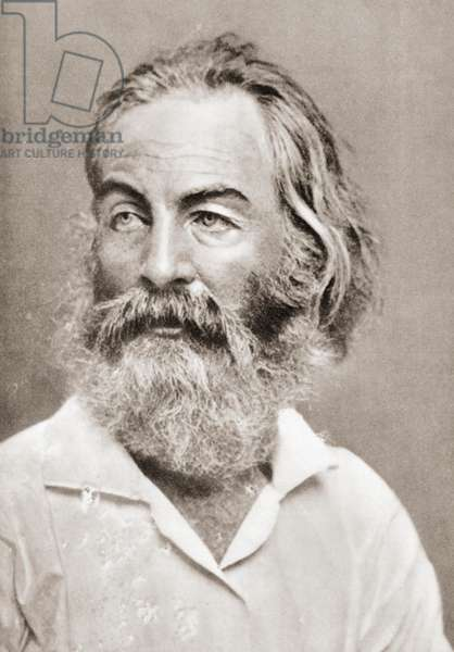 """Walter """"Walt"""" Whitman, after a contemporary print."""