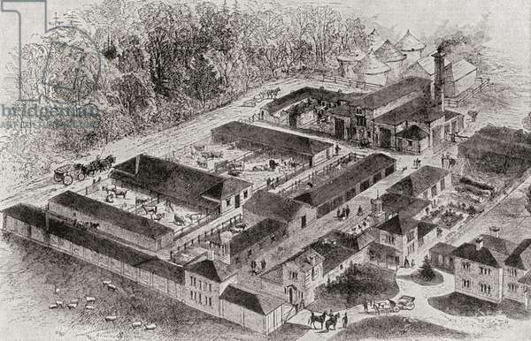 The model farm of Albert Edward, Prince of Wales, future King at Windsor, Berkshire, England in 1862. From Edward VII His Life and Times, published 1910.