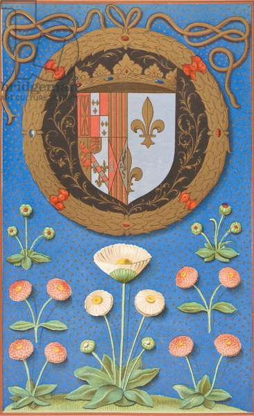 Arms and Emblematic Device of Marguerite Navarre, 1878 (colour litho)