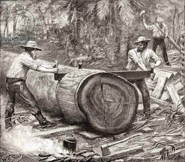 Splitters in the Bush, c.1880, from 'Australian Pictures' by Howard Willoughby, published by the Religious Tract Society, London, 1886 (litho)