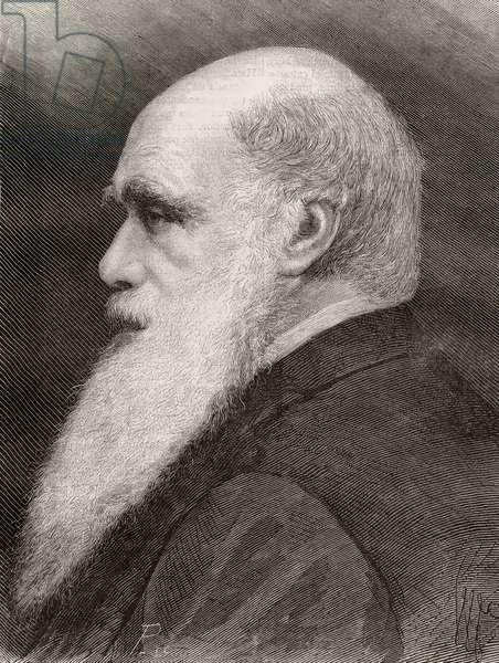 Charles Darwin, from 'Nuestro Siglo', published Barcelona, 1883 (litho)