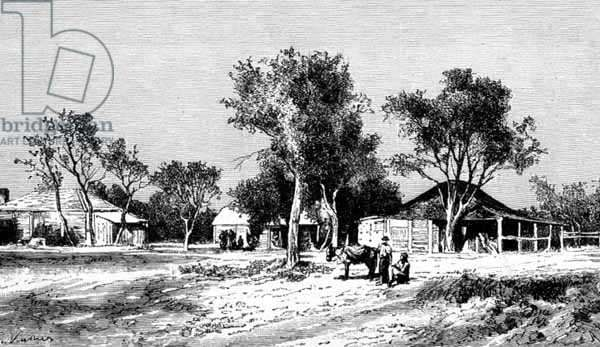 A Village on the Darling Downs, Queensland, Australia, from 'Australian Pictures', pub. by The Religious Tract Society, 1886 (engraving)