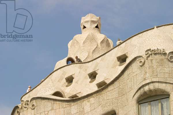 Roof, 1905-10 (photo) (detail of 162192)