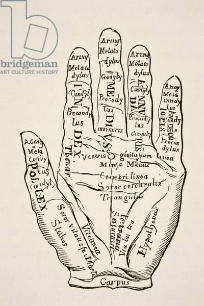 Specimen of the left hand with the lines and their horoscopic denominations, from Science and Literature in The Middle Ages by Paul Lacroix pub. London 1878