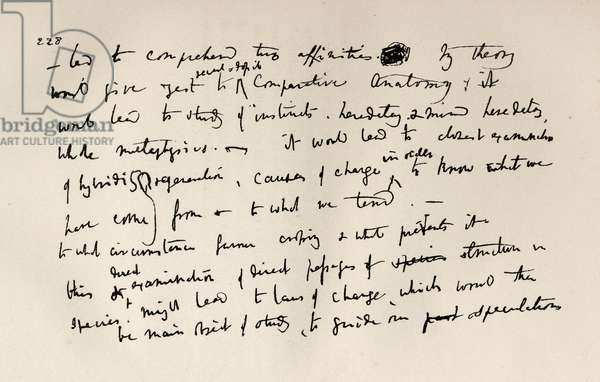 Page from a Darwin Notebook of 1837, from 'The life and Letters of Charles Darwin', Volume II, published in 1887 (litho)