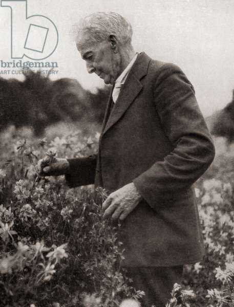 Luther Burbank, from Master Minds of Modern Science, published 1930 (b/w photo)