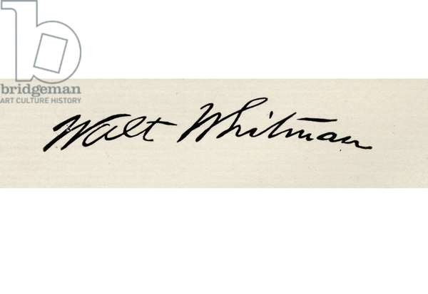 """Signature of Walt Whitman, 1819-1892. American poet, from  the book """"The International Library of Famous Literature"""". Published in London 1900. Volume XVIII."""