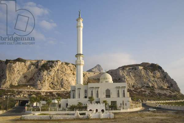 Mosque of the Custodian of the Two Holy Mosques (photo)
