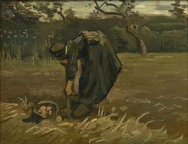 Potato harvest (oil on canvas)