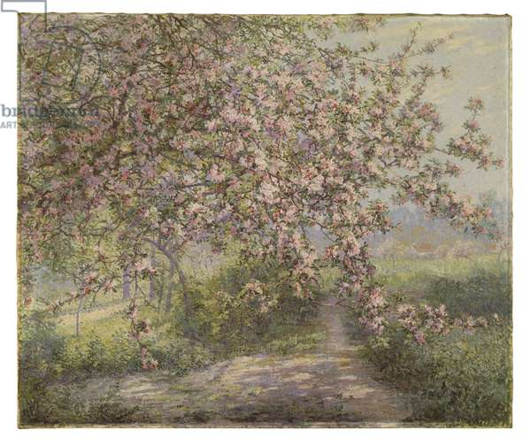 A Blossoming Apple Tree (oil on canvas)
