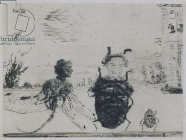 Peculiar Insects, 1888 (drypoint)