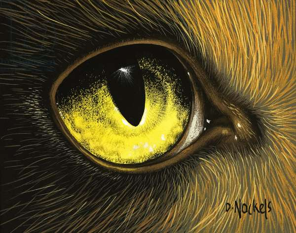 Eye of the Eagle (gouache on paper)