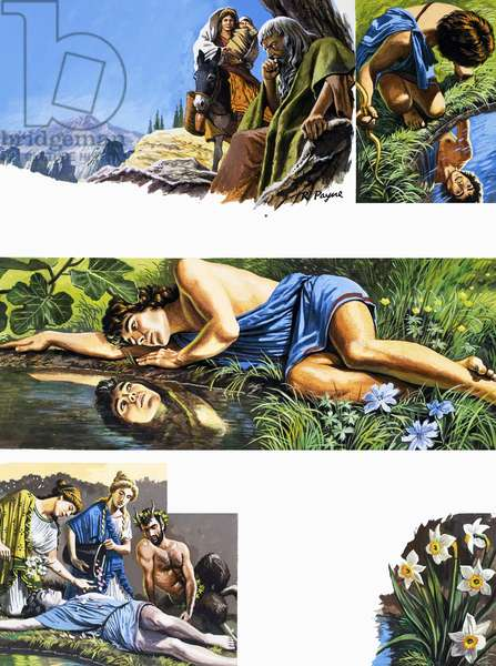 Legends of Ancient Greece: The Fatal Reflection