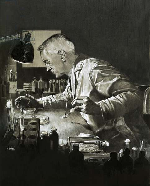 Alexander Fleming and the discovery of penicillin