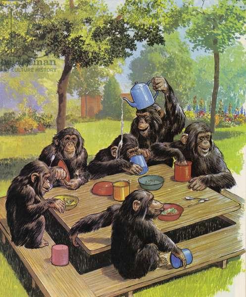 Chimps tea party at the Zoo (colour litho)