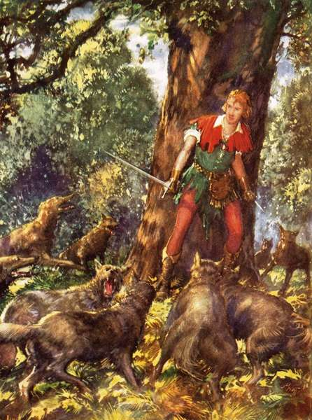Robin Hood trapped by wolves