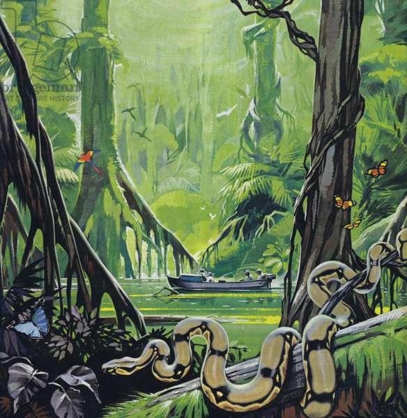 Exploring the river Amazon (colour litho)