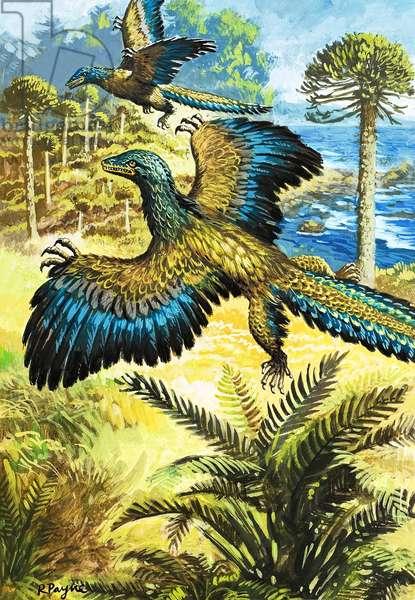 Archaeopreryx