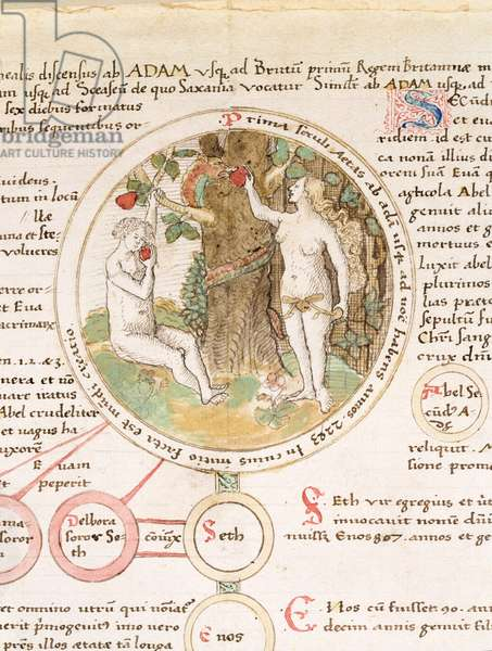 Ms 19 f.1 Adam and Eve with the serpent offering the apple, chronicle in Latin, (vellum)