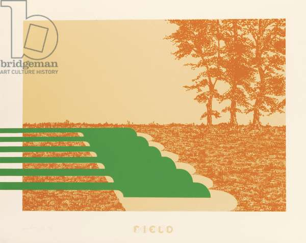 Field, 1973 (colour litho)