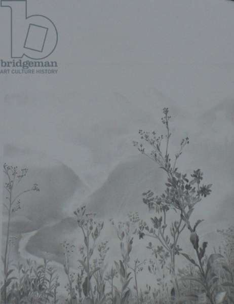 Misty Mountain, View from the Sun Gate, Machu Pichu, 2013 (graphite on paper)