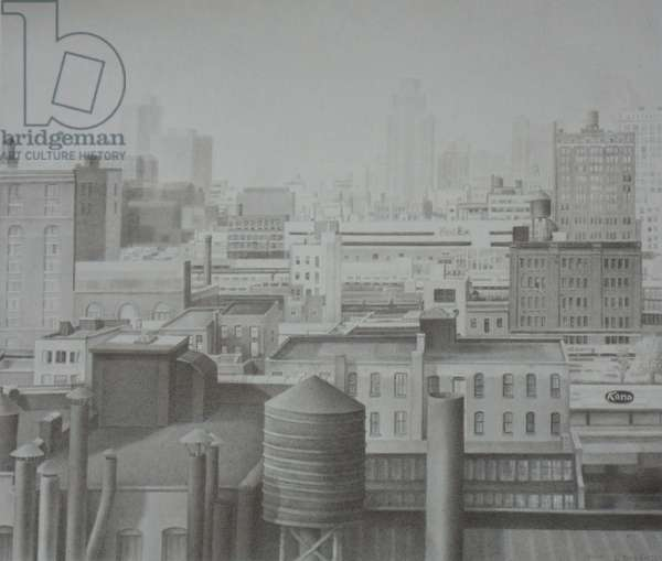 Chelsea Roof Tops, 2004 (graphite on paper)