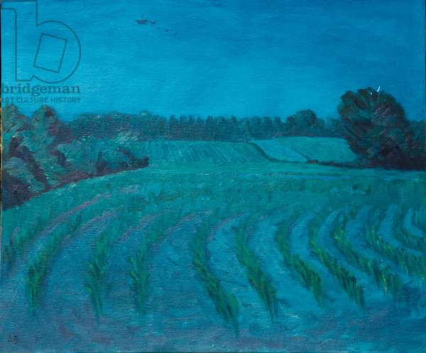 Maize Fields At Dusk, Brittany (Crepuscule), 2010 (oil on panel)