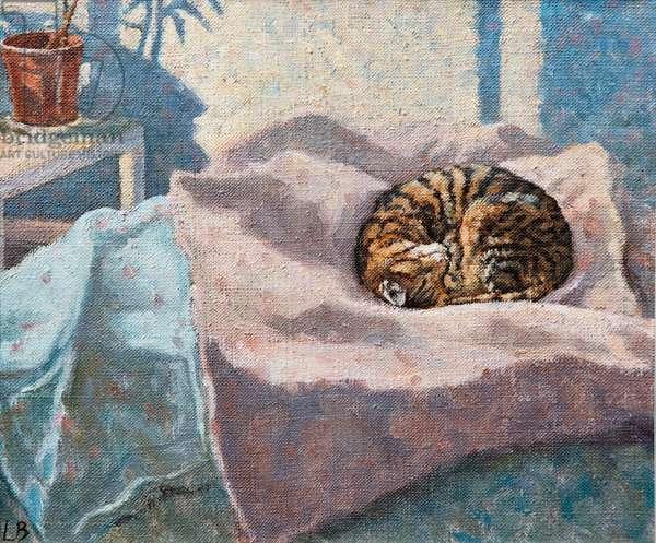 Shadows Pass, Sunlit Siesta, 2009 (oil on canvas)