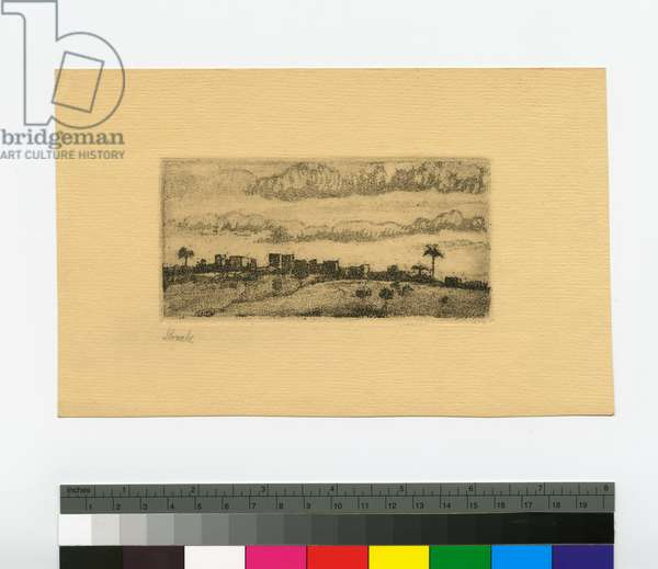 Arab Village on Mount Carmel, 1938 (lithograph, ink on paper)