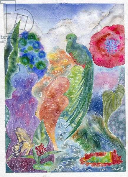 Jungle Quetzal, 2010 (w/c on paper)