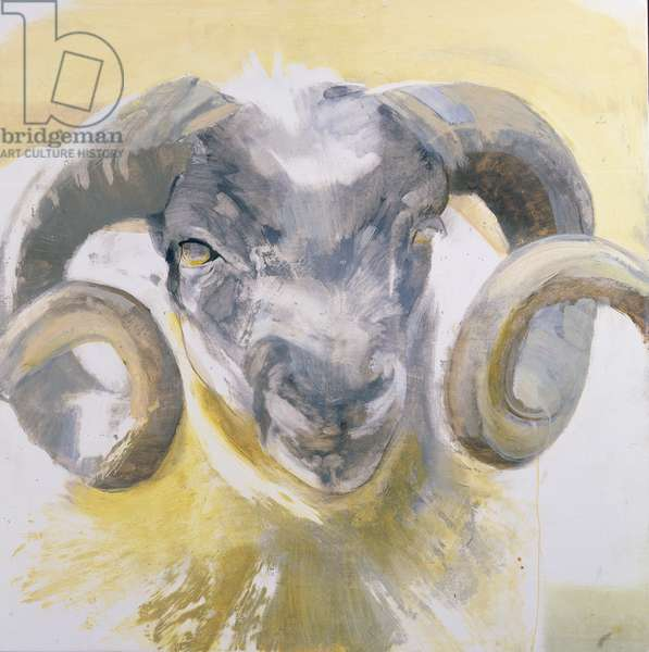 Long Horn Sheep (mixed media on gesso panel)