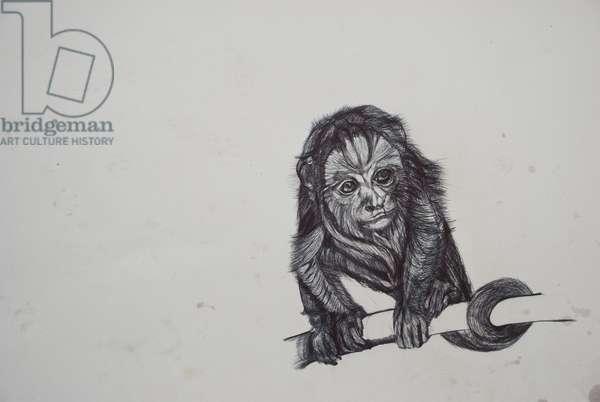 Monkey Business,2016,(bic biro on paper)
