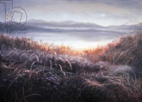 Misty, 2010 (oil on canvas)