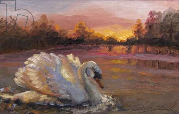 Swan at Sunrise, 2016, (oil on paper)