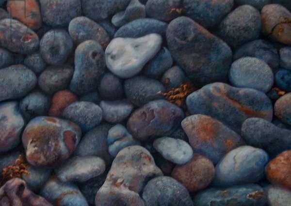 Adrian's Rocks 2012 (oil on canvas) Pebbles