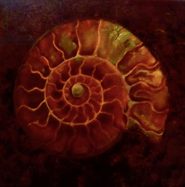 Red/Gold Ammonite, 2020, (oil on canvas)