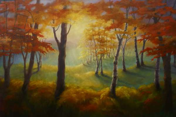 Light at the Edge 2013 (oil on canvas) Forest