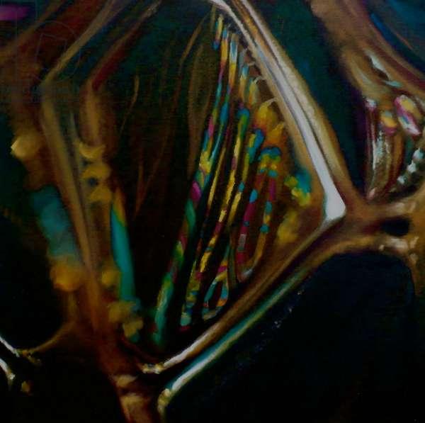 Birifringence, 2008 (oil on canvas)