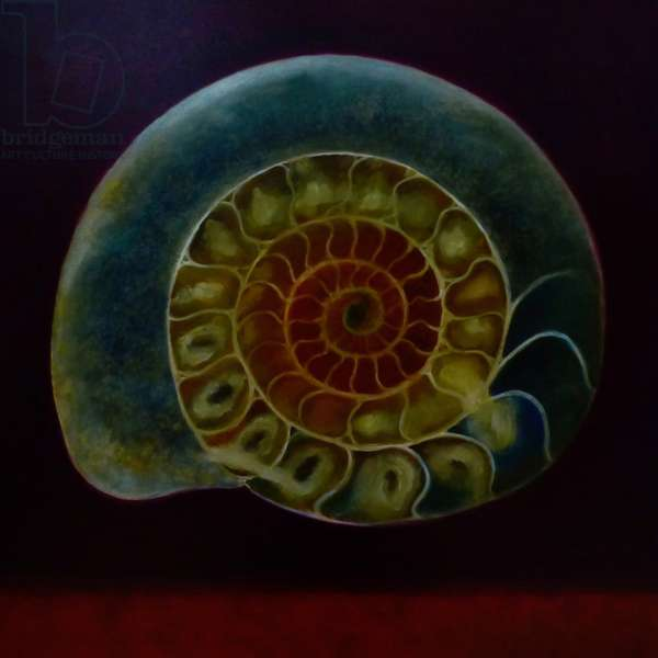 Green Ammonite, 2020, (oil on canvas)