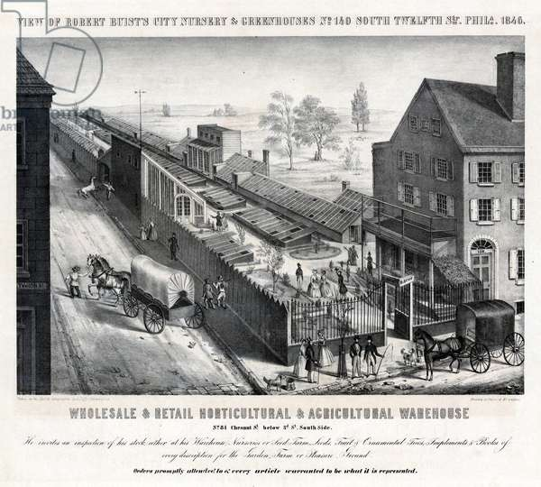 View of Robert Buist's city nursery & greenhouses No. 140 South Twelfth Str. Phila. 1846, printed by Wagner & M'Guigan, 1846 (litho)