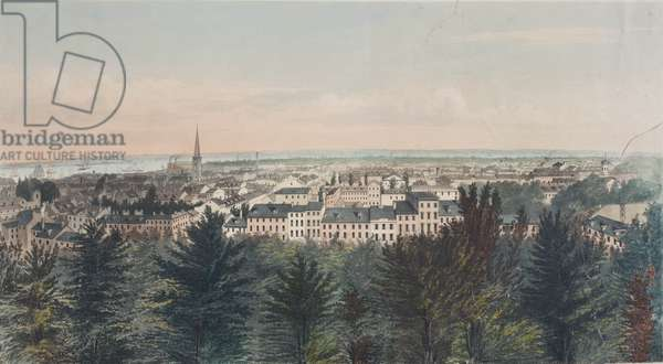 South view over Philadelphia looking towards Navy Yard, Southwark and Moyamensing, c.1850 (litho)